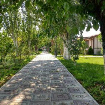 Cottage's  place